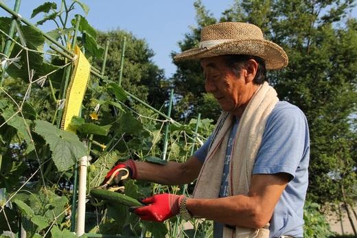 会長にとって、畑で野菜が育つ事が楽しみであり      会社にとって、社員が成長する姿が楽しみであり      また、お客様のお家が完成していく姿も楽しみであり      その裏には大変なことがたくさんあると思いますが      夏の暑い季節に向け      日々、頑張り続けていきたいと思います